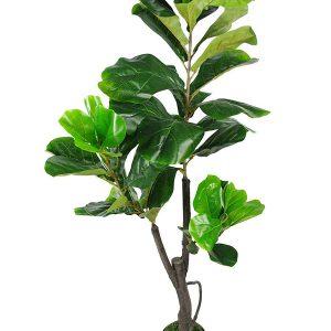 bán cây bàng giả trang trí phòng khách