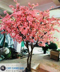 bán cây hoa anh đào giả trang trí