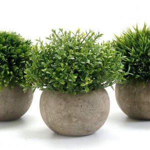 chậu cây cỏ giả nhỏ trang trí không gian quán