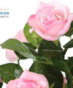 mua cây hồng giả trang trí