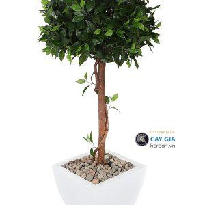 mua cây cảnh giả tphcm, cây si