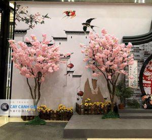 cây hoa anh đào giả trang trí quán ăn