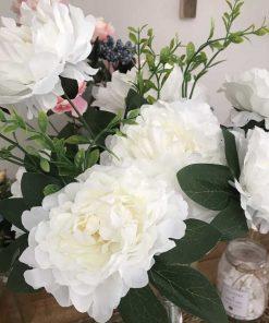 Cây hoa lụa đẹp